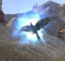 Moonfire_Phoenix