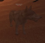 Wolf_of_Jari
