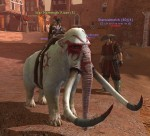 War_Mammoth_Rider